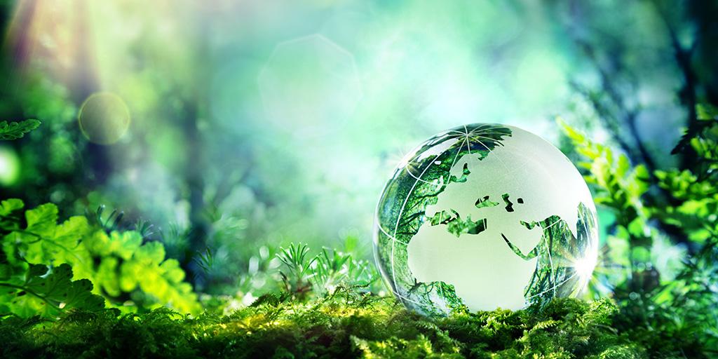 Die Wirtschaft will klimaneutral werden